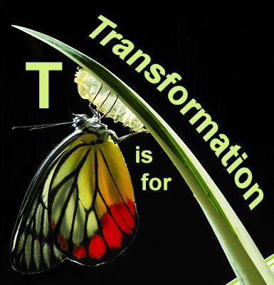 2017! Transformation